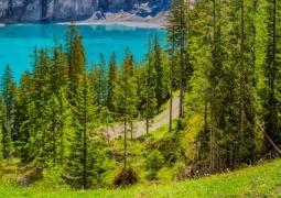 Zwitserland FAQ